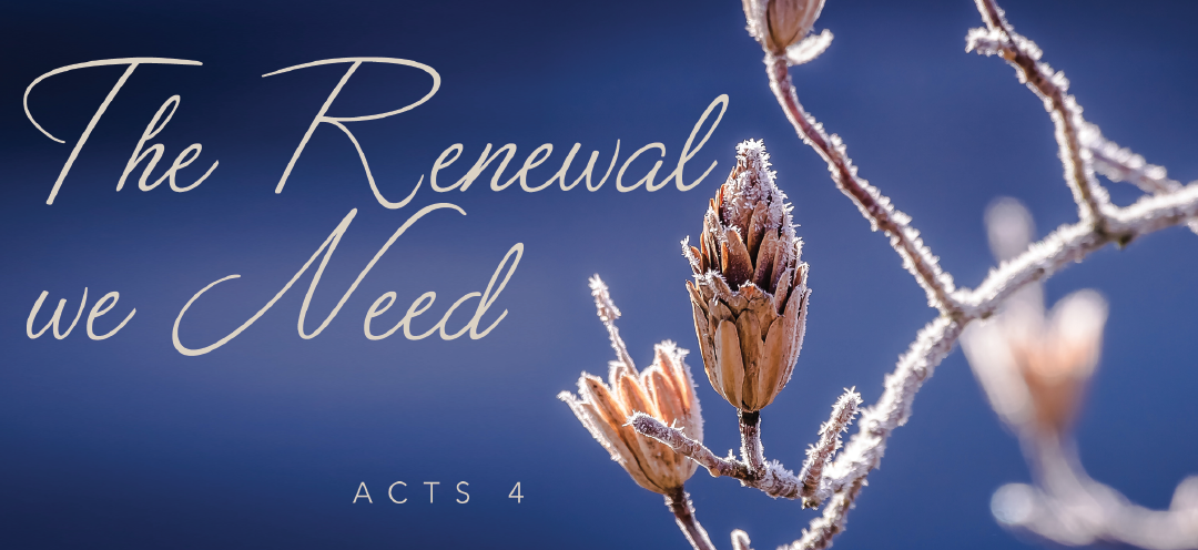 The Renewal We Need