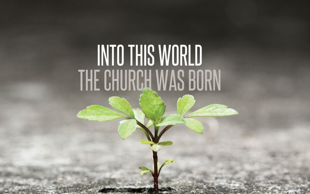 Into This World The Church Was Born